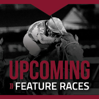 Upcoming Stakes Races You Won't Want To Miss